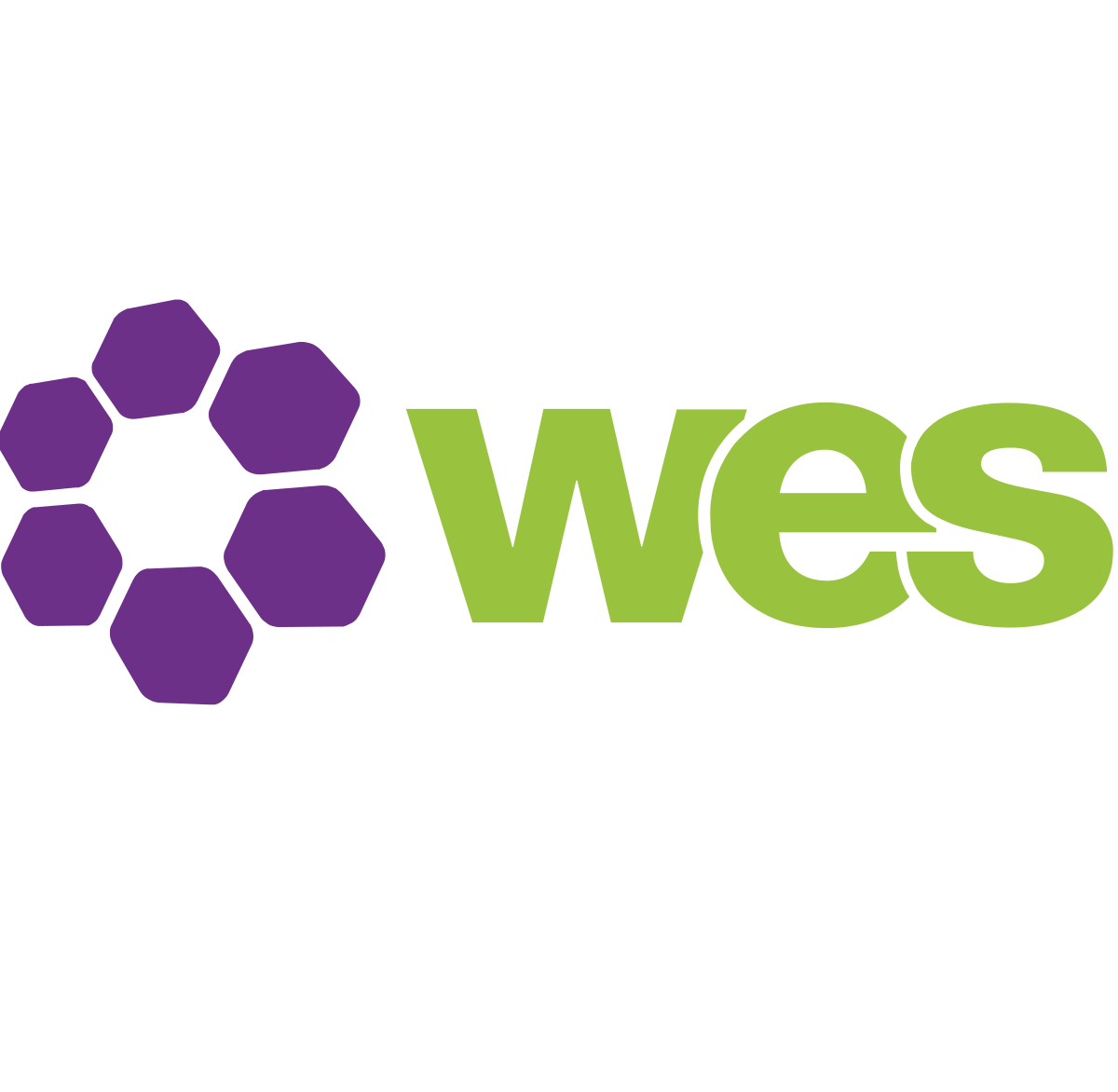 WES useful link logo